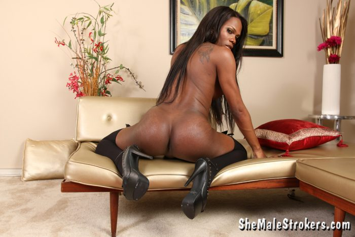 Ebony Shemale TS Brooke Morgan and her Tight Ass