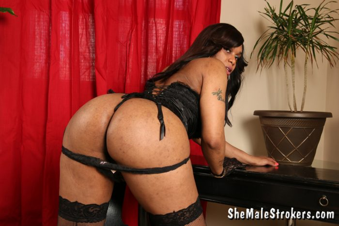 Shemale Diamond Yumm and her phat black Ass